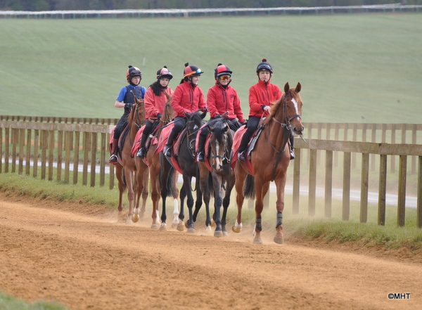 17-_Astrogold_Nikki_leading_the_the_fillies_home_after_3rd_lot