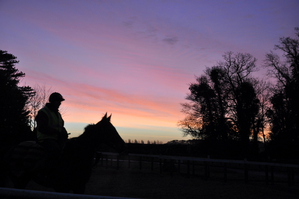 106_morning_sky_with_horse