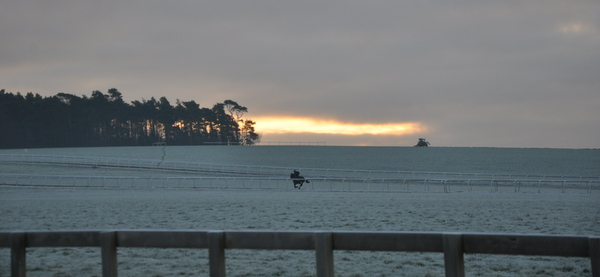 21_cantering_in_frost