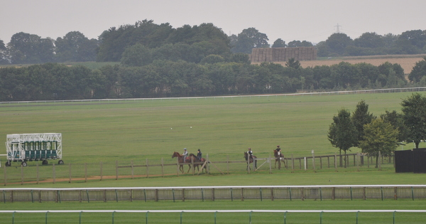 01_Racecourse_Side