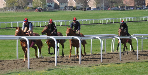 05_Cantering_Bury_Side