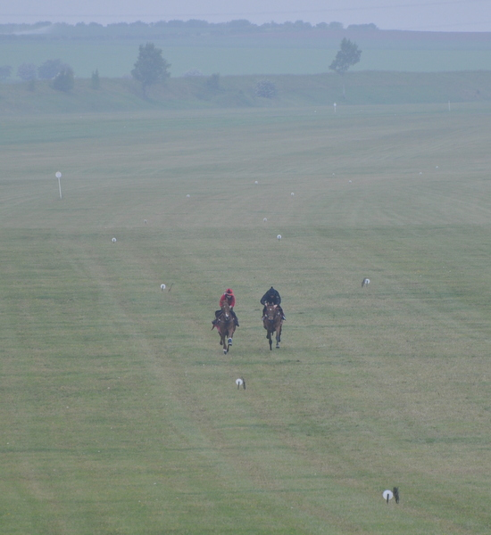 09_View_down_gallops